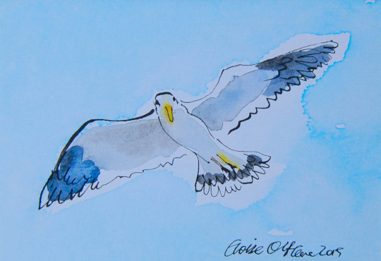 The first of four watercolour and ink pen paintings of a seagull. (c) by Eloise O'Hare.