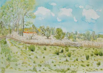 A watercolour painting of the Marston Marshes in Eaton, Norwich. (c) 2017 by Eloise O'Hare.